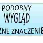 Nasz język – nasze lekcje! Lekcje polskiego dla dzieci dwujęzycznych – lekcja nr 11: podobny wygląd różne znaczenie 2